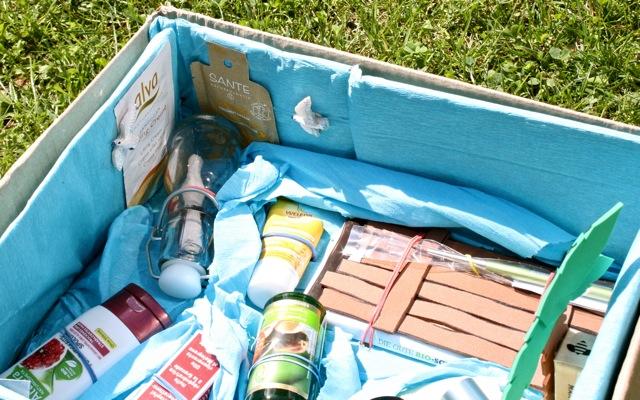 Blogger Bio ty Box