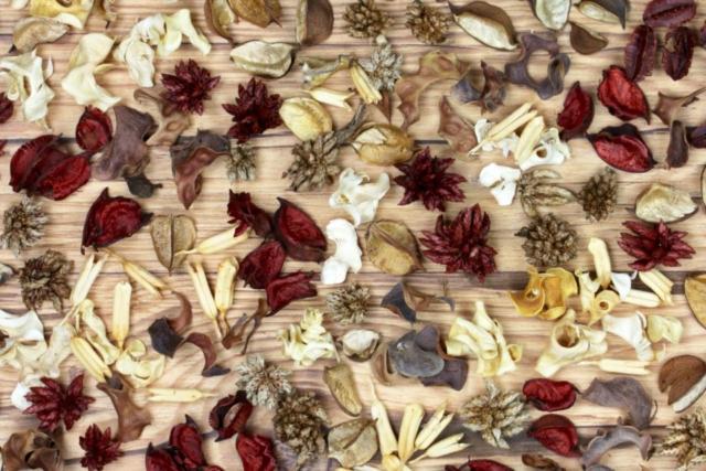 flatlay dried flowers kernels pods wood