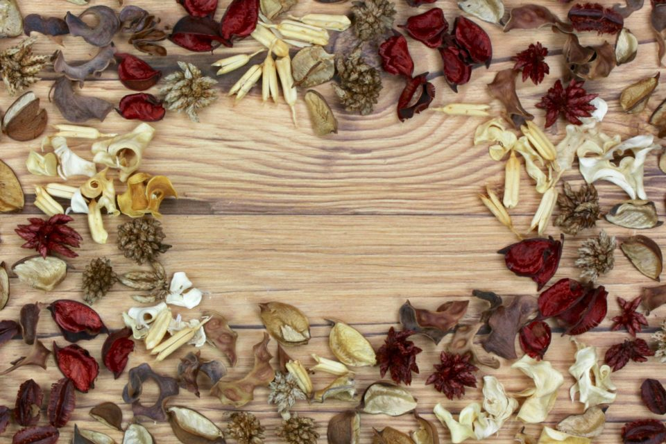 flatlay dried flowers kernels pods leaves wood