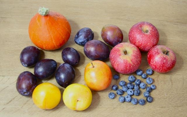 Kürbis, Pflaumen, Äpfel, Beeren